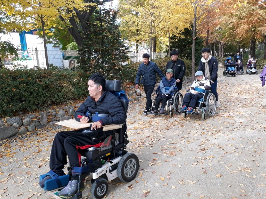 휠체어 타고 트레킹 사진
