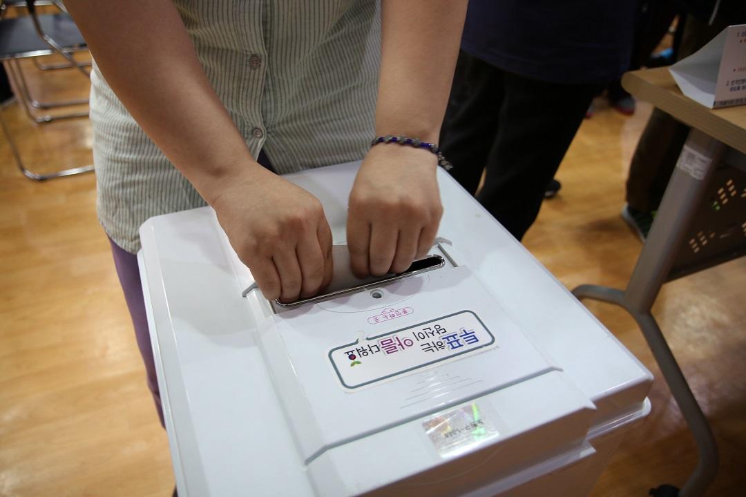 투표함에 투표용지를 넣는 손의 모습